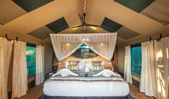 Luxe Tent Rra Dinare