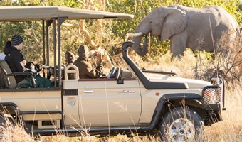 Rra Dinare Game Drive