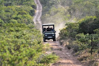 4X4 Game Drive Bij Pumba Game Reserve