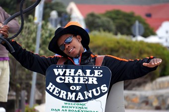 Whale Cryer In Hermanus